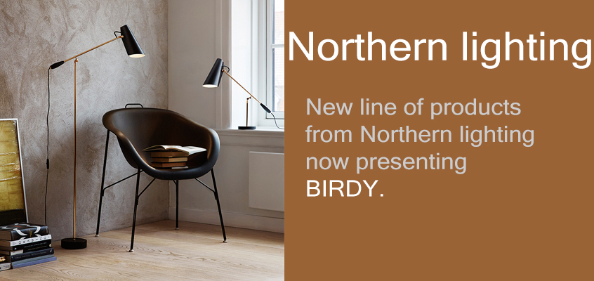 northernlighting-birdy
